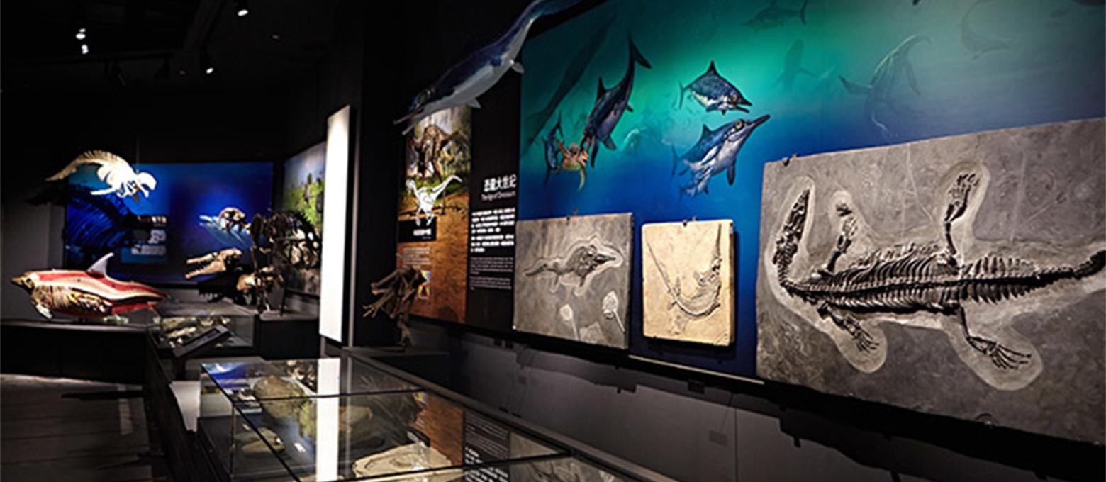 奇美博物館-生命的壯闊:演化之旅